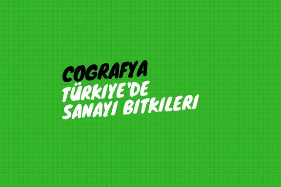 Türkiye'de Sanayi Bitkileri