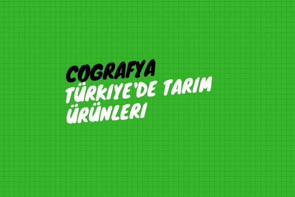 Türkiye'de Tarım Ürünleri