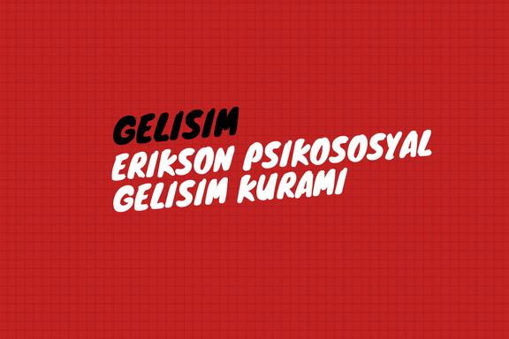 Erikson Psikososyal Gelişim Kuramı